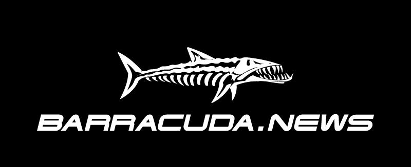 barracuda_news_logo_carton-black_800x326